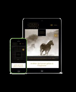 Site vitrine pas cher - Agence web Altus Concept Bordeaux